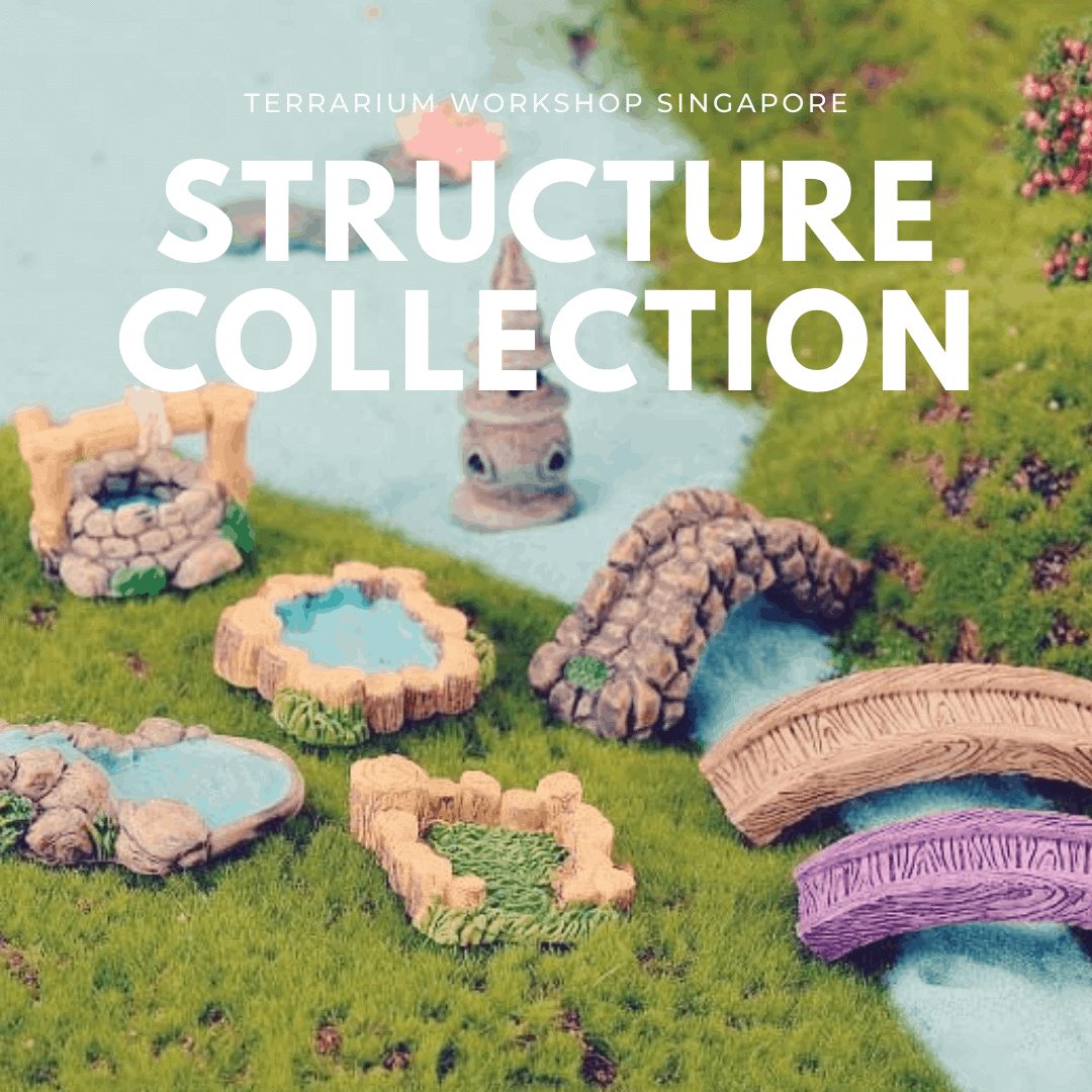 Structure Collection